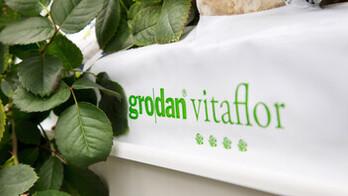 rose, greenhouse, hydroponic, growing, vitaflor